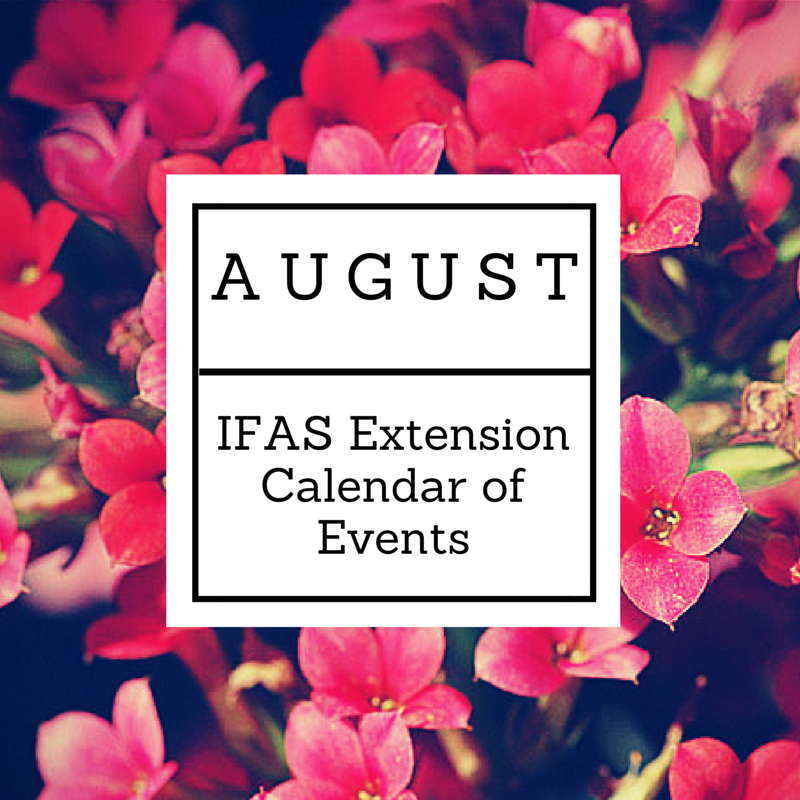 AUGUST IFAS