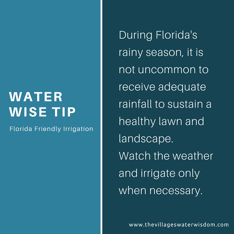 Water Wise Tip Florida Friendly Irrigation
