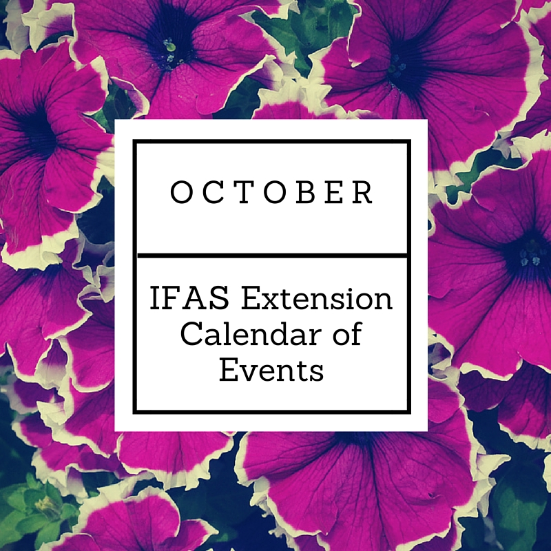 OCTOBER IFAS