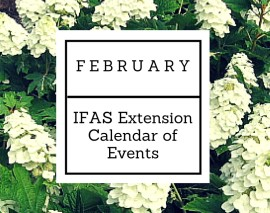 February 2016 IFAS Extension Calendar of Events