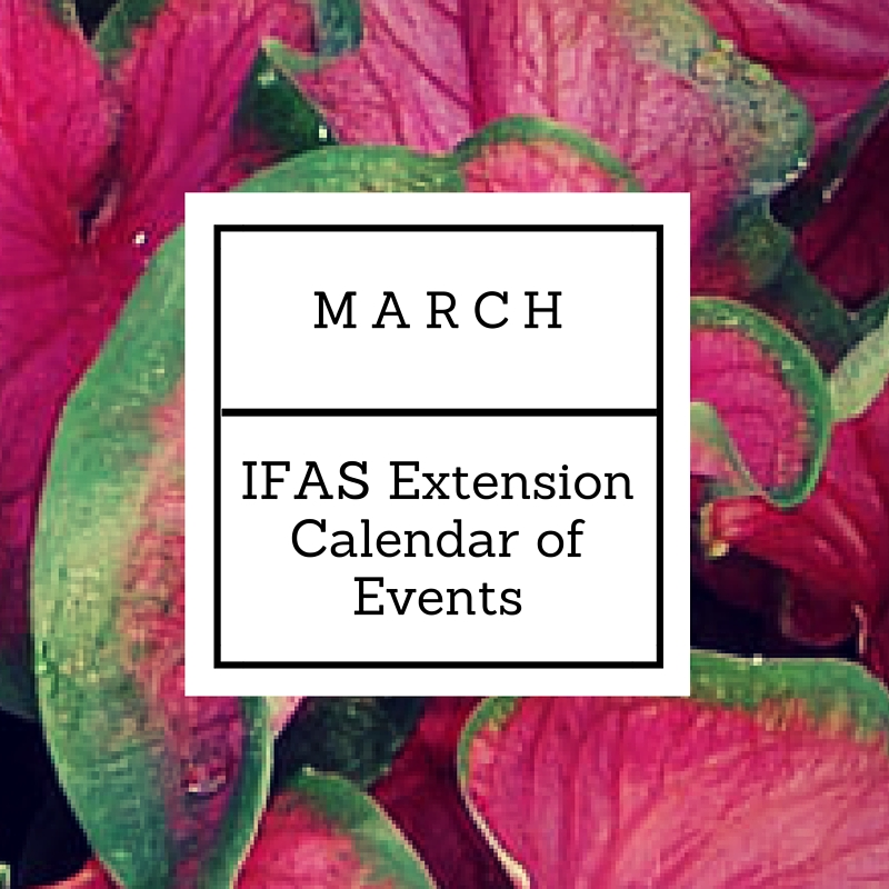 March 2016 IFAS