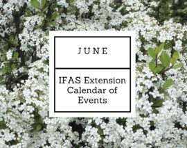 June 2016 IFAS Extension Calendar of Events