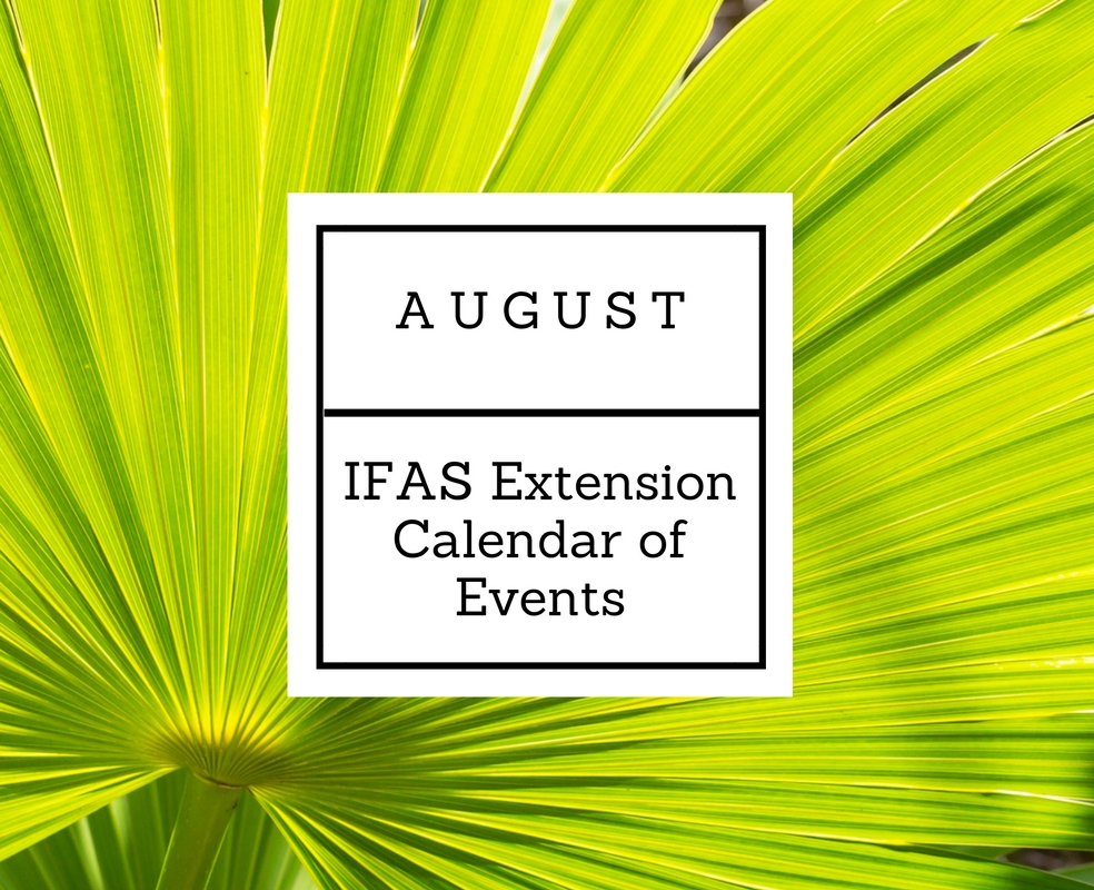 August 2016 IFAS