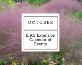 October 2016 IFAS Extension Calendar of Events