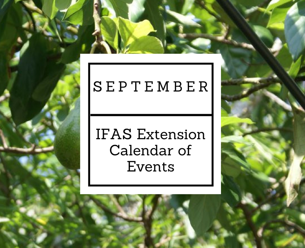 september-2016-ifas