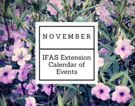 November 2016 IFAS Extension Calendar of Events