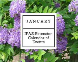 January 2017 IFAS Extension Calendar of Events