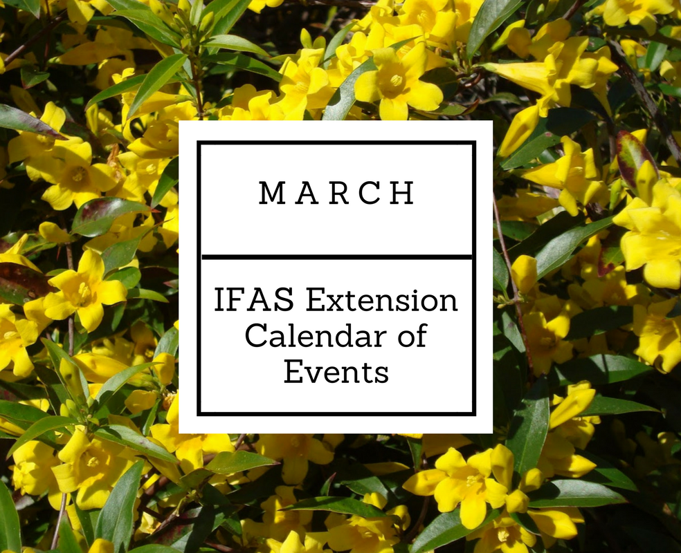 March IFAS
