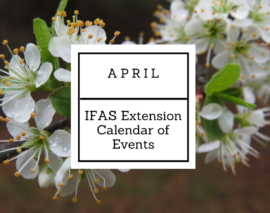April 2017 IFAS Extension Calendar of Events