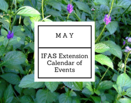 May 2017 IFAS Extension Calendar of Events