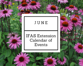 June 2017 IFAS Extension Calendar of Events