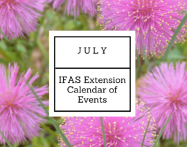 JuLY 2017 IFAS Extension Calendar of Events