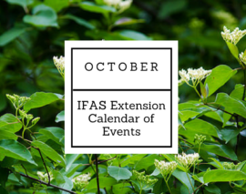 October 2017 IFAS Extension Calendar of Events