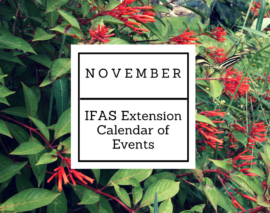 November 2017 IFAS Extension Calendar of Events
