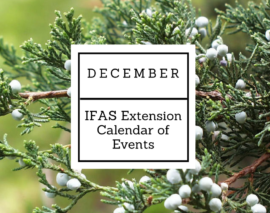 December 2017 IFAS Extension Calendar of Events
