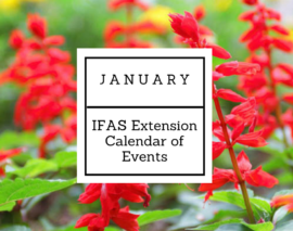 January 2018 IFAS Extension Calendar of Events