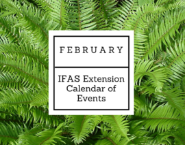 February 2018 IFAS Extension Calendar of Events