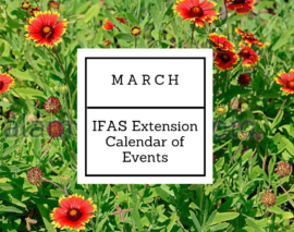 March 2018 IFAS Extension Calendar of Events