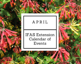 April 2018 IFAS Extension Calendar of Events