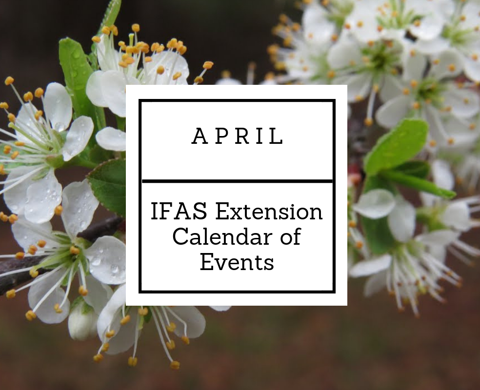 April 2019 IFAS Extension Calendar of Events